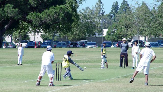 Youth Cricket Academy